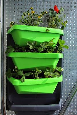 Vertical Garden Juwel Balkon