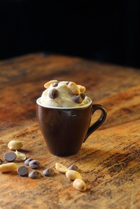 Peanut Butter Chocolate Chip Icecream