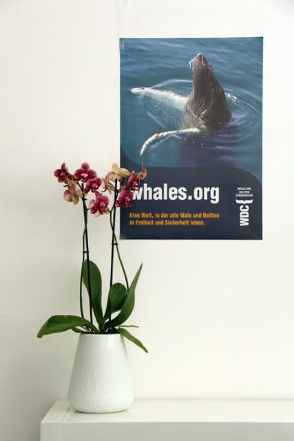Orchidee Räder Vase