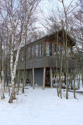 Hofgut Hafnerleiten - Baumhaus