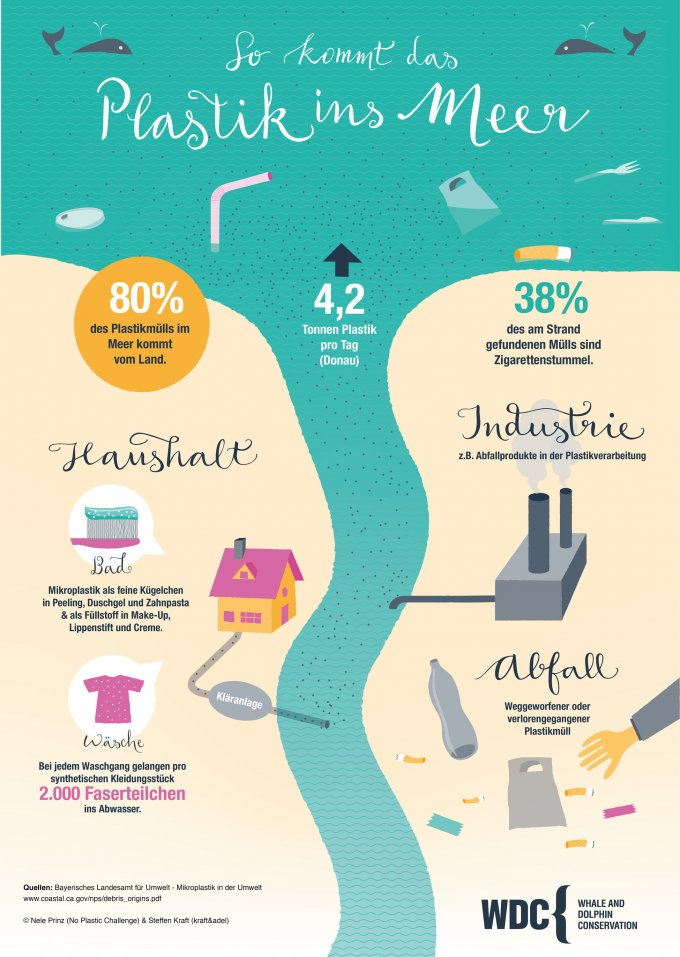 Wie kommt das Plastik ins Meer