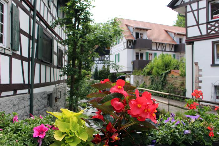 Blumendorf Sasbachwalden