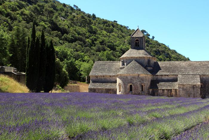 Abbaye de Senanque, Provence