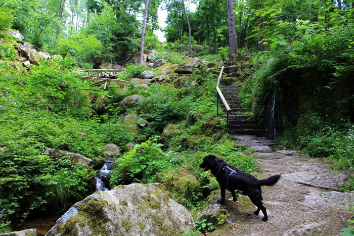 Gaishöll-Wasserfälle Sasbachwalden