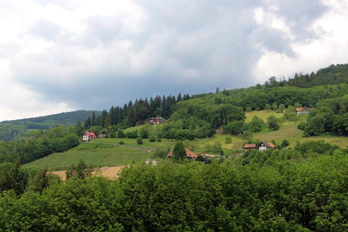 Panoramawanderweg in Sasbachwalden
