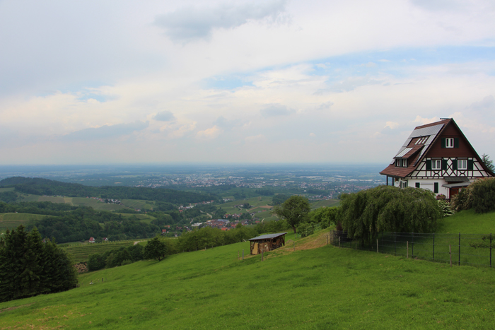 Ausblick Sasbachwalden vom Spinnerhof