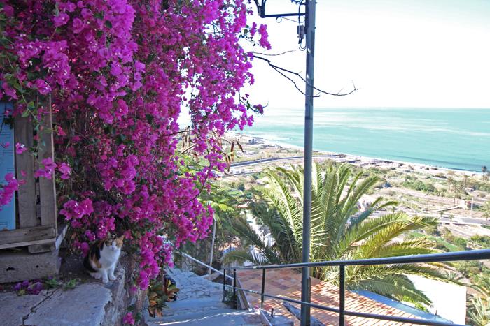 La Calera Blick aufs Meer