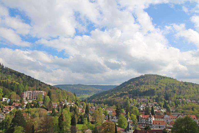 Ausblick vom Zimmer im Schwarzwald Panorama
