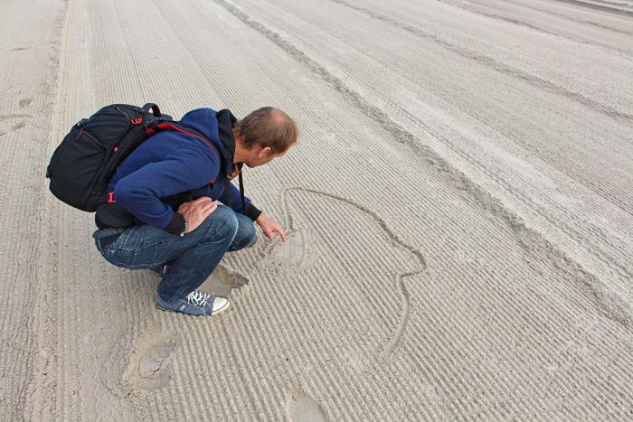 Beach Clean Up Kunstaktion: Schweinswal
