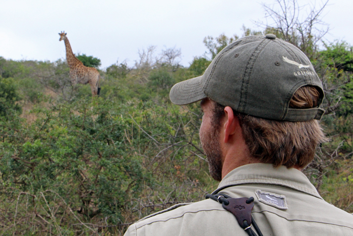 Guide mit Giraffe im andbeyond Phinda Game Reserve