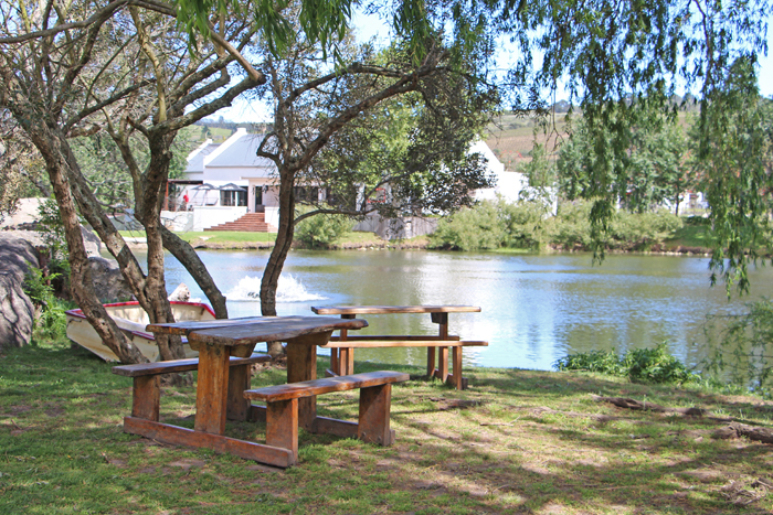 Picknick Spier Stellenbosch