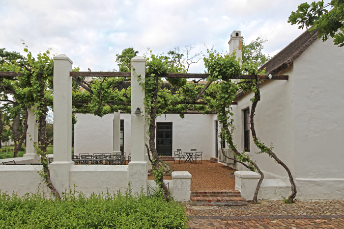 Spier Wine Estate - Stellenbosch