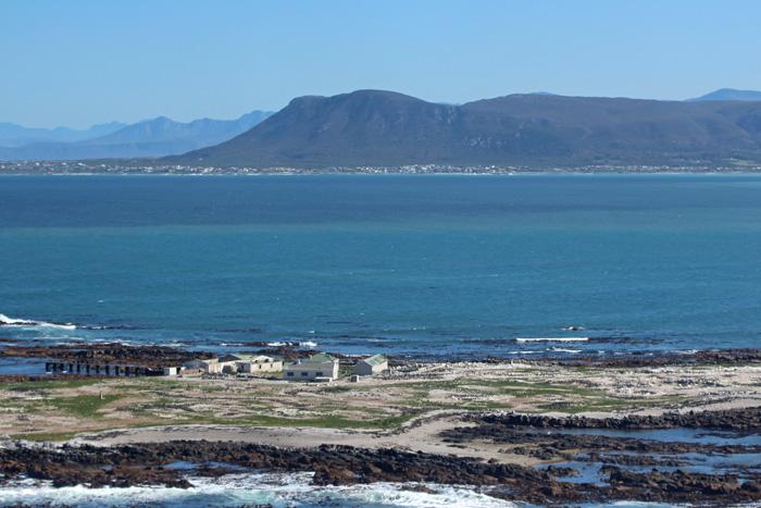 Dyer Island Südafrika