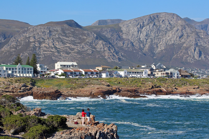 Whale Watching von Land aus in Hermanus