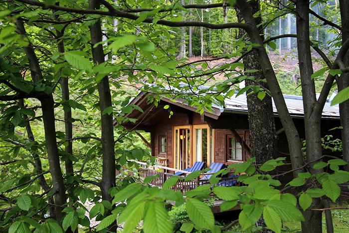 Waldsauna Biohotel Der Daberer