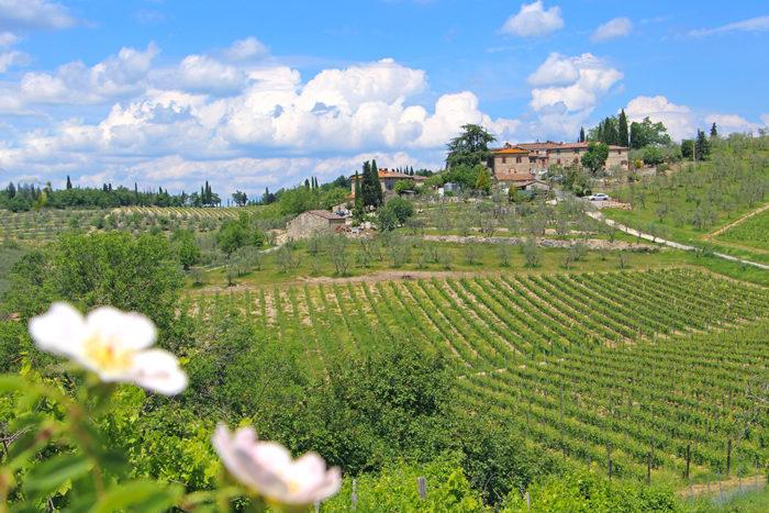 Casanuova di Ama im Chianti Gebiet in der Toskana, Italien