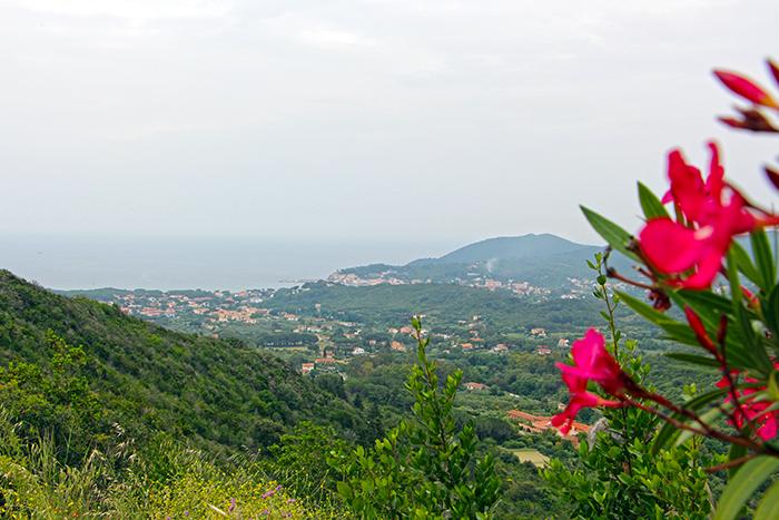 Bergblick auf Elba