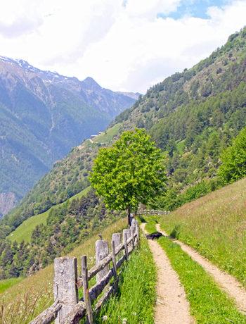 Meraner Höhenweg Südtirol