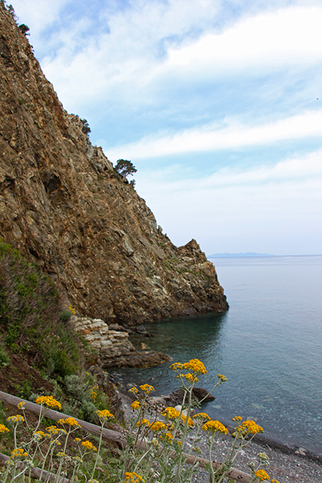 Spiaggio della Polveraia, Elba