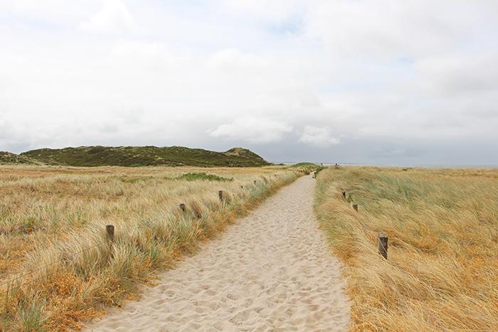 Weg durch die Dünen auf Sylt