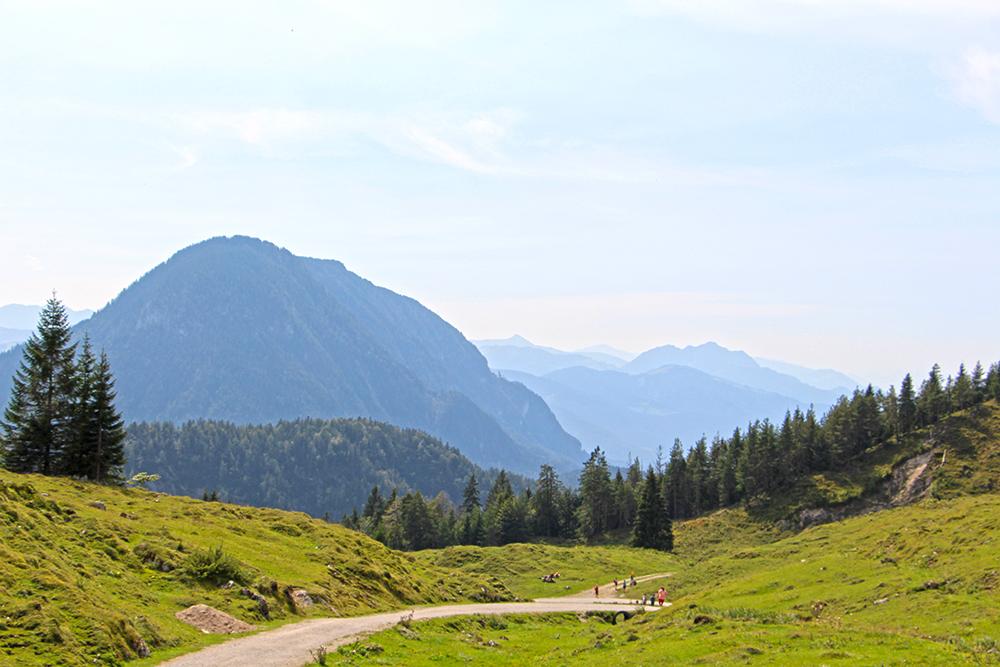Schotterweg zur Walleralm, Kaisergebirge in Tirol