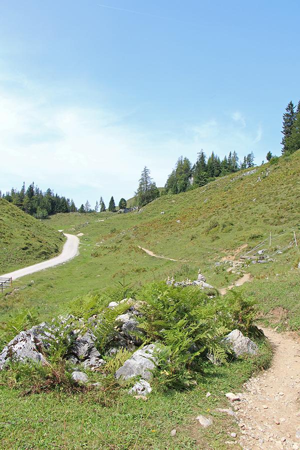 Wanderung zur Walleralm, Kaisergebirge