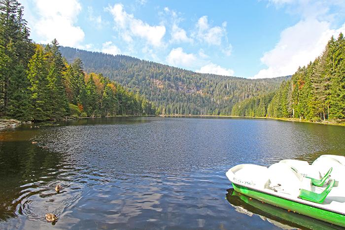 Großer Arbersee im Nationalpark Bayerischer Wald