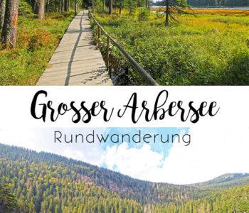 Rundwanderung Grosser Arbersee - barrierearm wandern