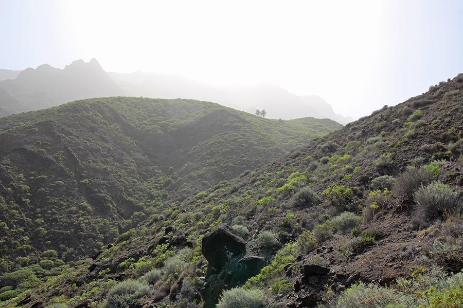Saharastaub auf Gomera sorgt für weiches Licht