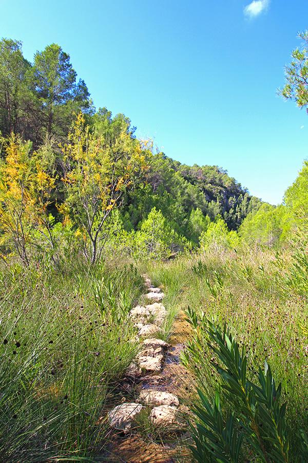 Wanderung am Rio Cazuma in der Provinz Valencia