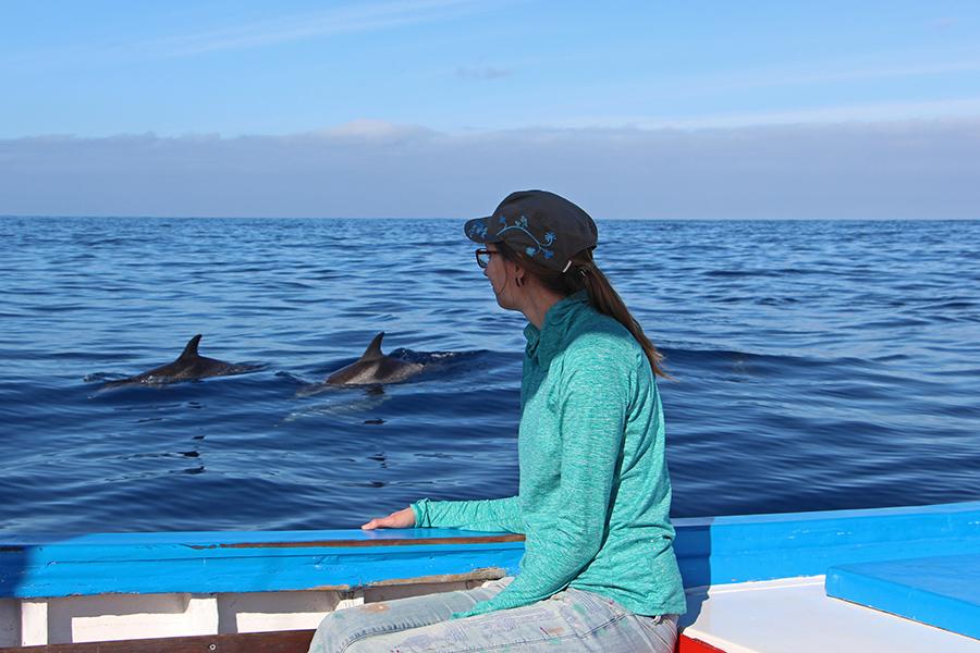 Delfinbeobachtung auf La Gomera - Responsible Whale Watching Kanaren