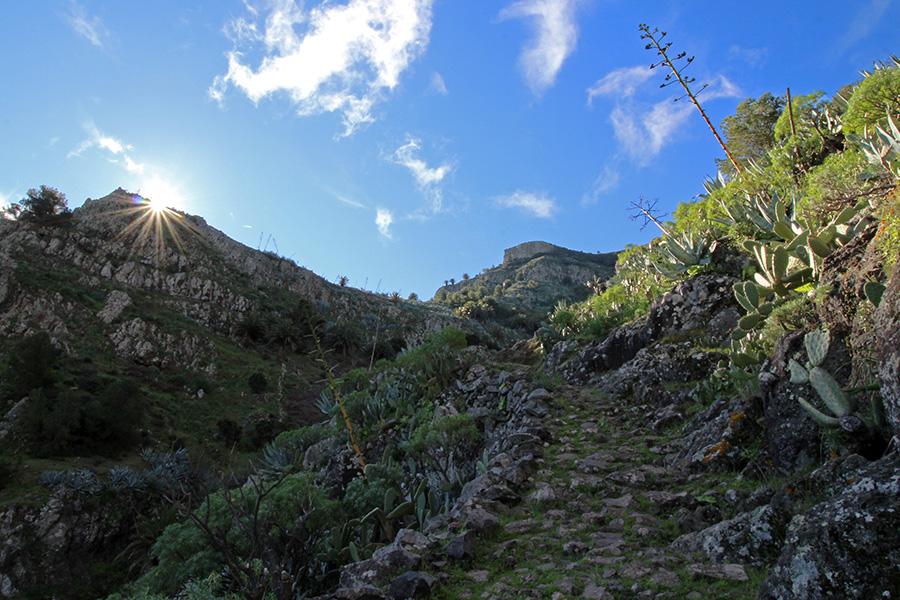 Wanderung nach La Laja auf Gomera