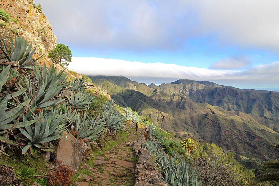 Wanderung nach La Laja auf La Gomera