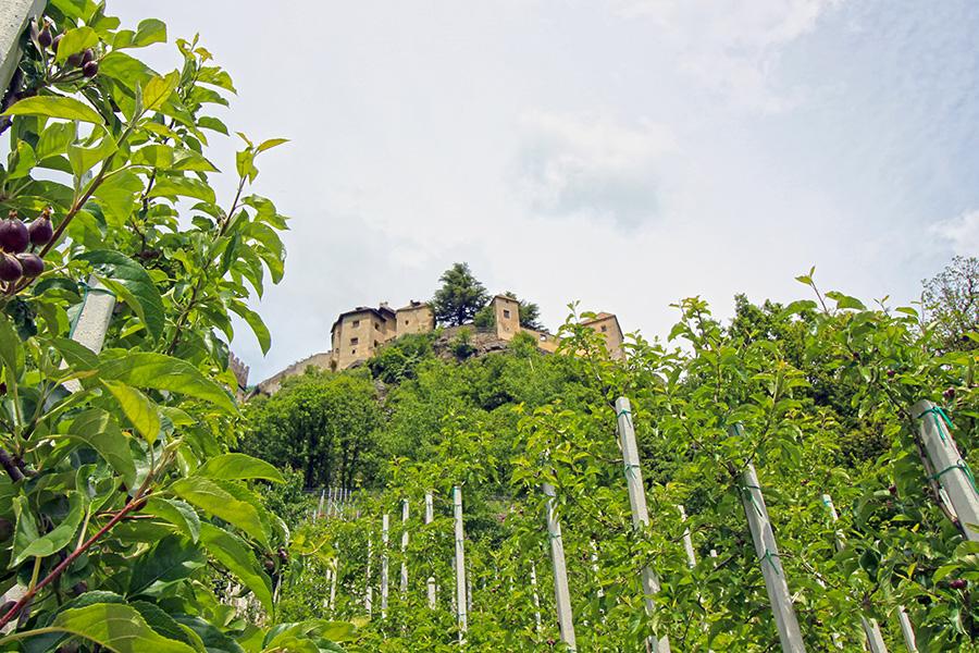 Schloss Juval und Messner Mountain Museum