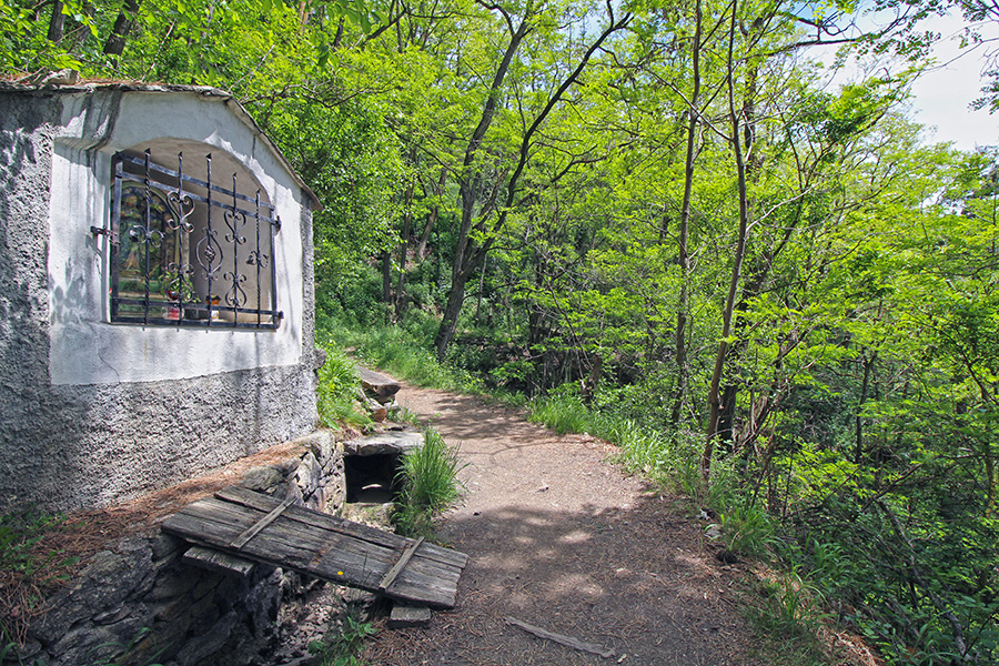 Waalweg von Tschars zum Schloss Juval