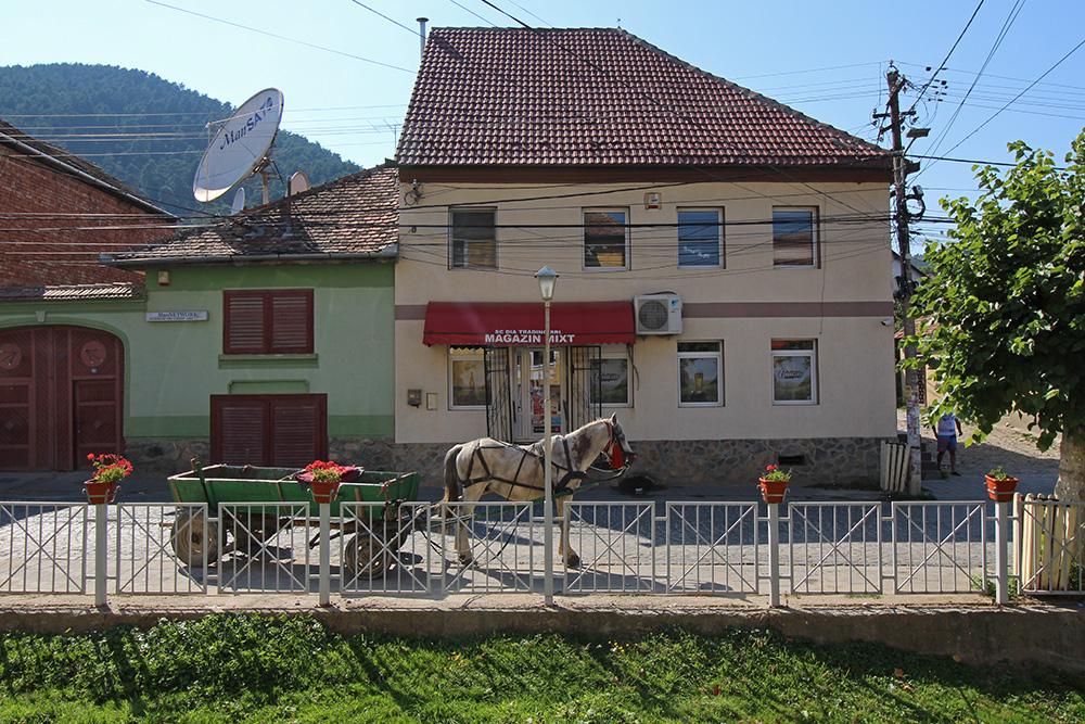 Rasinari: Pferdewagen in Rumänien