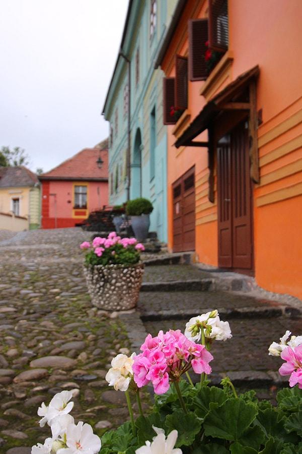 Sighisoara bunte Häuser in Rumänien
